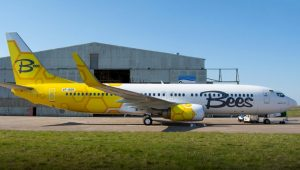самолет Bees Airline